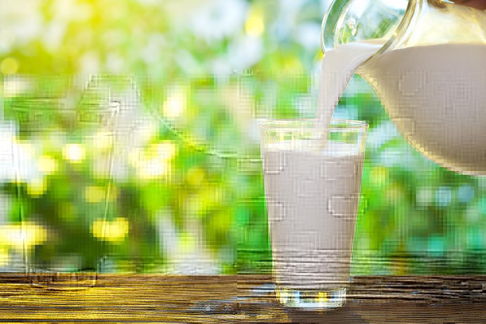 牛乳ダイエット